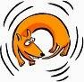 dog-chasing-tail